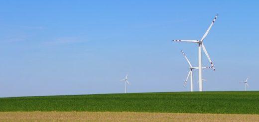 Windkrafträder auf einem Feld